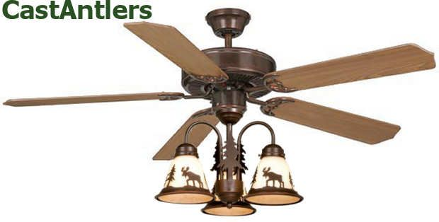 31 Best Rustic Ceiling Fans With Lights Images On