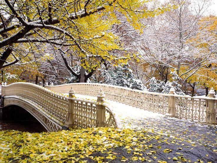 premières chutes de neige à central park new york Wallpaper