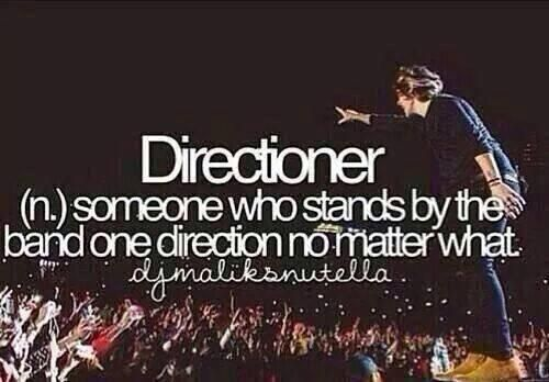 I luv u 1D! Thank you for all the laughs and smiles!