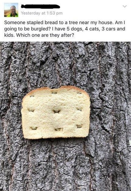 flirting meme with bread without bread mix