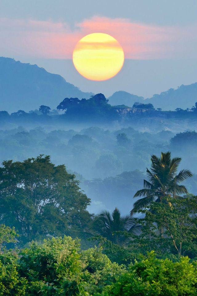 SriLanka sunrise over jungle 14 best Tropical