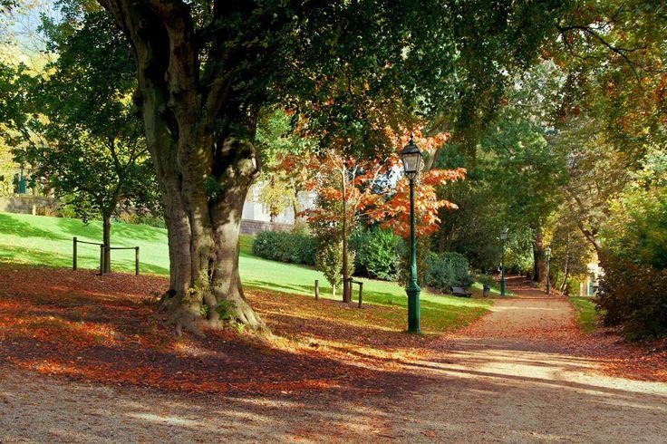 Los parques son perfectos para la recreación y, como lo indicó un equipo de investigadores de la Universidad de Hamburgo, también son importantes para controlar las condiciones locales del clima; estos pueden ser la clave para combatir el cambio climático.