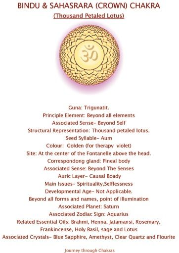 7 Sahasrara or crown chakra cheatsheet - loved & pinned by www.omved.com
