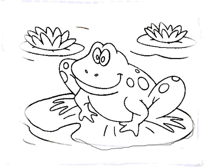 best 25 frog coloring pages ideas on pinterest frog template - Frog Coloring Pages