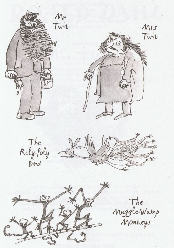 the twits by roald dahl book report Liz attenborough, of the roald dahl museum and story centre in  the twits is  one of the few popular dahl books that has yet to be made into.