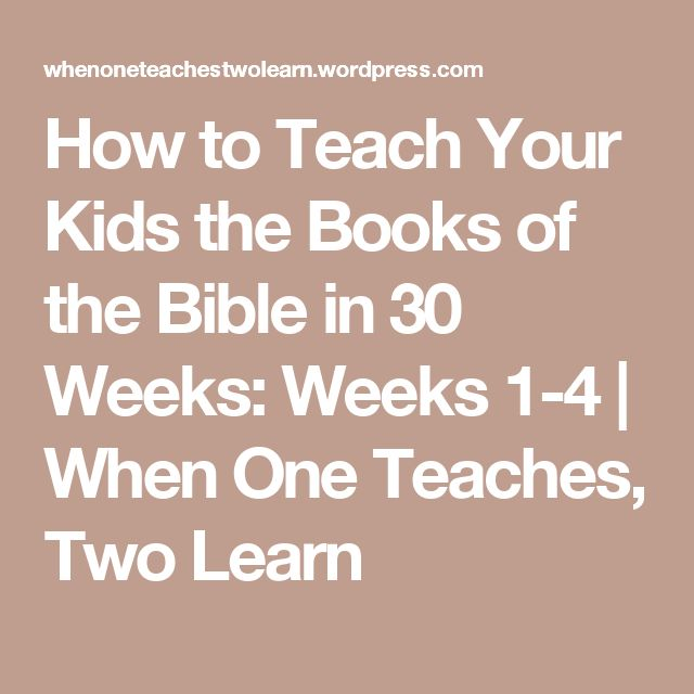 """""""The Book of Acts"""" Sunday School Lesson Series"""