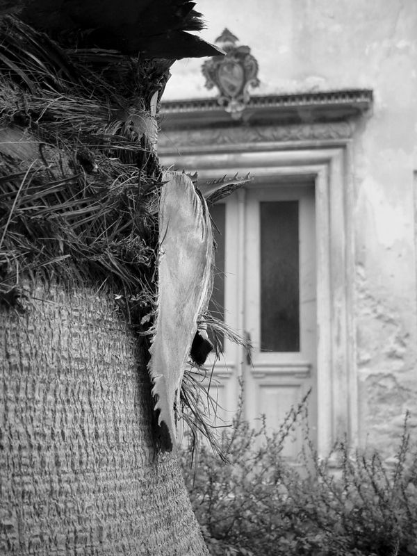 Kvar, CroaziaPhoto: Giorgio Appierto