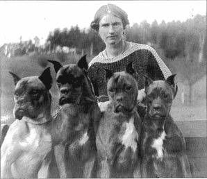 One of the earliest pictures from German history of Boxer dogs is from Munich in 1891. The picture shows four very stoic looking dogs and their owner- a woman named Friederun Stockmann. According to the records, Stockmann wrote a book called My Life With Boxers...very serious indeed...