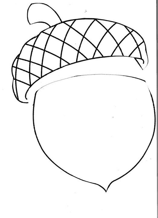 Acorns - Free Coloring Pages