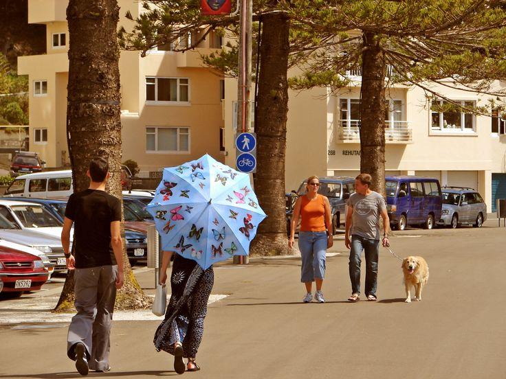 Sunday promenade, Oriental Bay, Wellington https://www.amazon.com/s/ref=nb_sb_ss_i_1_12?url=search-alias%3Ddigital-text&field-keywords=neil+rawlins&sprefix=neil+rawlins%2Cundefined%2C689