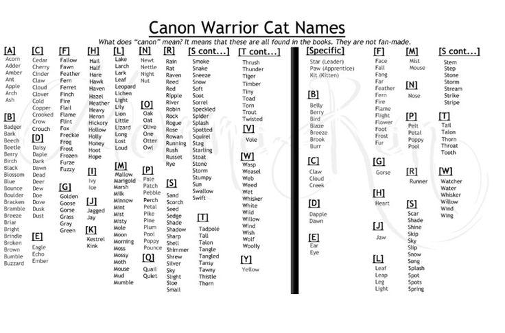 Fierce Girl Cat Names