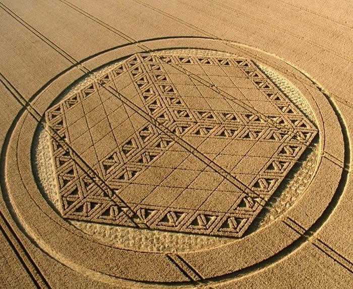 New Crop Circles August 26, 2012. Crop circles. Círculos en los cultivos
