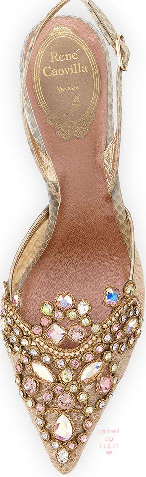 Rene Caovilla Jeweled Lace & Watersnake Pump | LOLO❤
