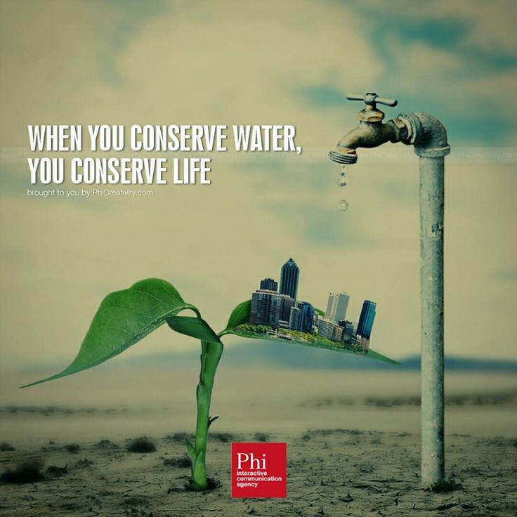 """""""When you conserve water you conserve life."""" #GlobalShift #businessopportunity #onlinebusiness #businessminded #quotesdaily #tumblrquotes #dailyquotes #depressedquotes #bestquotes #entrepreneurial #youngentrepreneur #femaleentrepreneur #entrepreneursofinstagram #instahappiness #myhappiness #bestronger #motivator #motivations #motivationalquote #positivevibes #likeforlike #follow4follow #bestoftheday #lifestyle #F4F  http://ift.tt/1zDMqHn by Ed Zimbardi http://edzimbardi.com"""