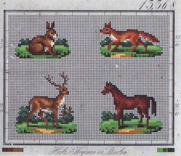 Woodland animals and a horse