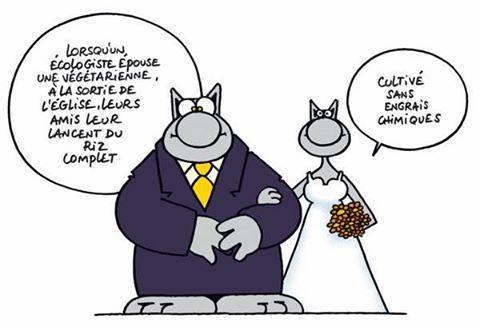 """""""- Lorsqu'un écologiste épouse une végétarienne, à la sortie de l'église, leurs amis leur lance du riz complet - Cultivé sans engrais chimique """" [ Le chat - Philippe Geluck ]"""