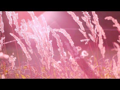 Música romantica instrumental - música relajante de fondo - YouTube