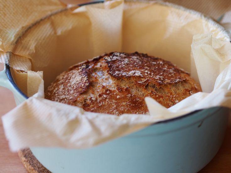 No niin, nyt ei tarvitse pataleipää enää odottaa aamuun! Löysin nimittäin netin ihmemaasta reseptin, jolla leipä syntyy vain reilun kolmen tunnin kohotuksella. Kokeilin – ja toimii! Pointti o…