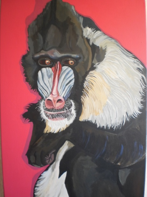 Baboon 2012 Acrylic on Canvas.  Sam Mitchell