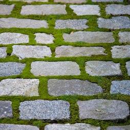 moss + antique granite cobbles