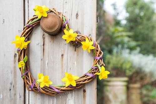 Woven daffodil wreath hanging on door. Narcissus 'Tete a tete' - © GAP Photos