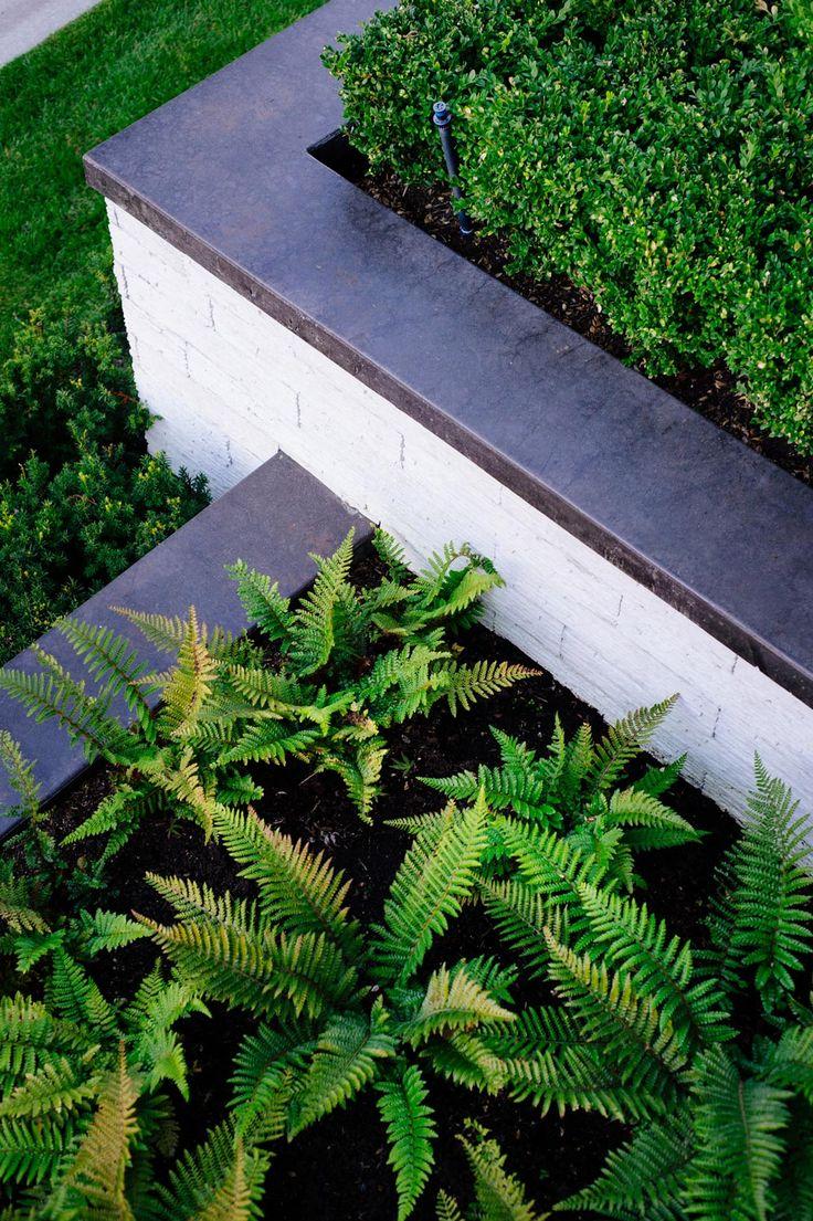Teer Co. | Landscape Design Abbotsford, BC Canada