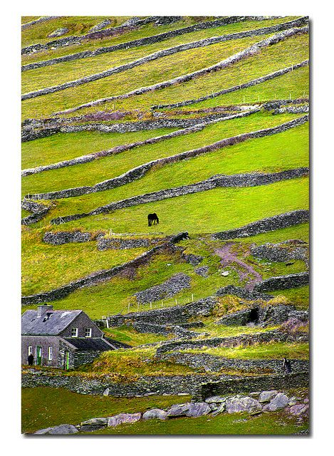 "Dingle Peninsula - Ireland...""Why YES, we would LOVE to come and visit you and stay at your house for a few weeks!"""