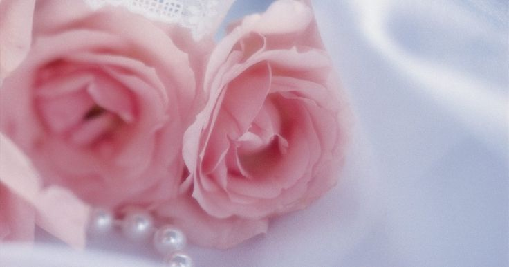 Como fazer uma rosa de tecido sem costura usando fitas. As fitam fazem lindas rosas sem costura, somente com dobras, torções e enroladas. Use pequenas rosas de fitas de cetim para decorar álbuns ou cartões feitos em casa, ou amarre em um pente de cabelo ou grampo para fazer acessórios de cabelo. Use fita dupla face ou gorgorão para conseguir belos efeitos. Rosas de bordas fiadas são maiores e ficam bem ...