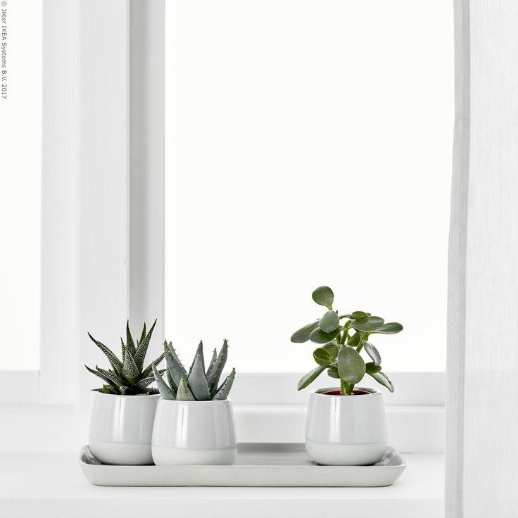 76 best images about ukrasi on pinterest tes blue velvet sofa and ikea ps. Black Bedroom Furniture Sets. Home Design Ideas