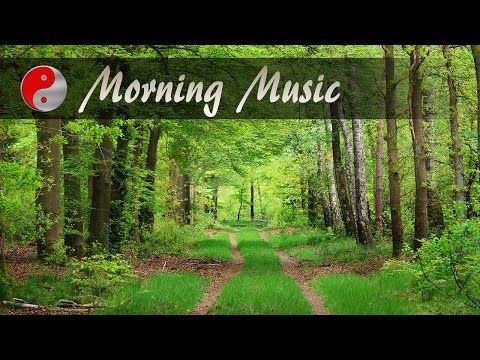 Morning Music For Positive Energy: Beautiful Piano Music Forest Sound Fo...