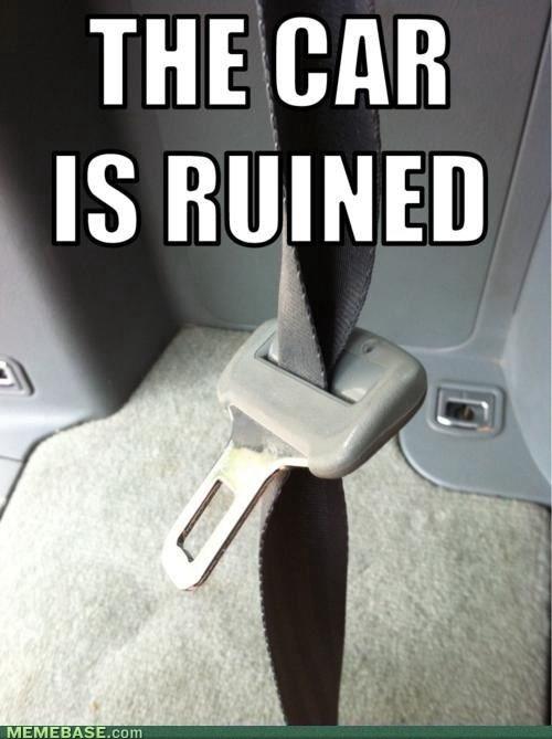 truePets Peeves, Hate, Laugh, Funny, Humor, Ruins, Things, True Stories, Cars Seats