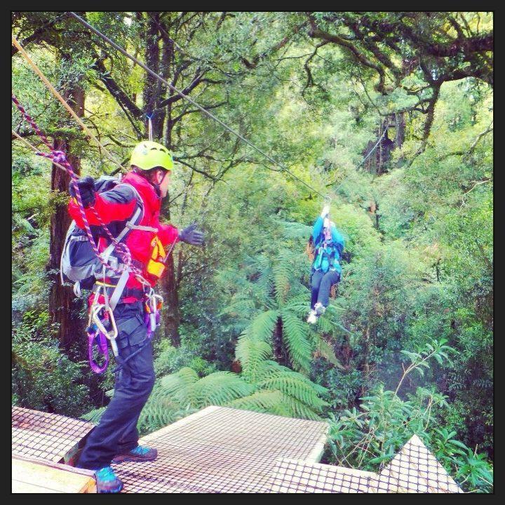 Canopy Tours #rotorua