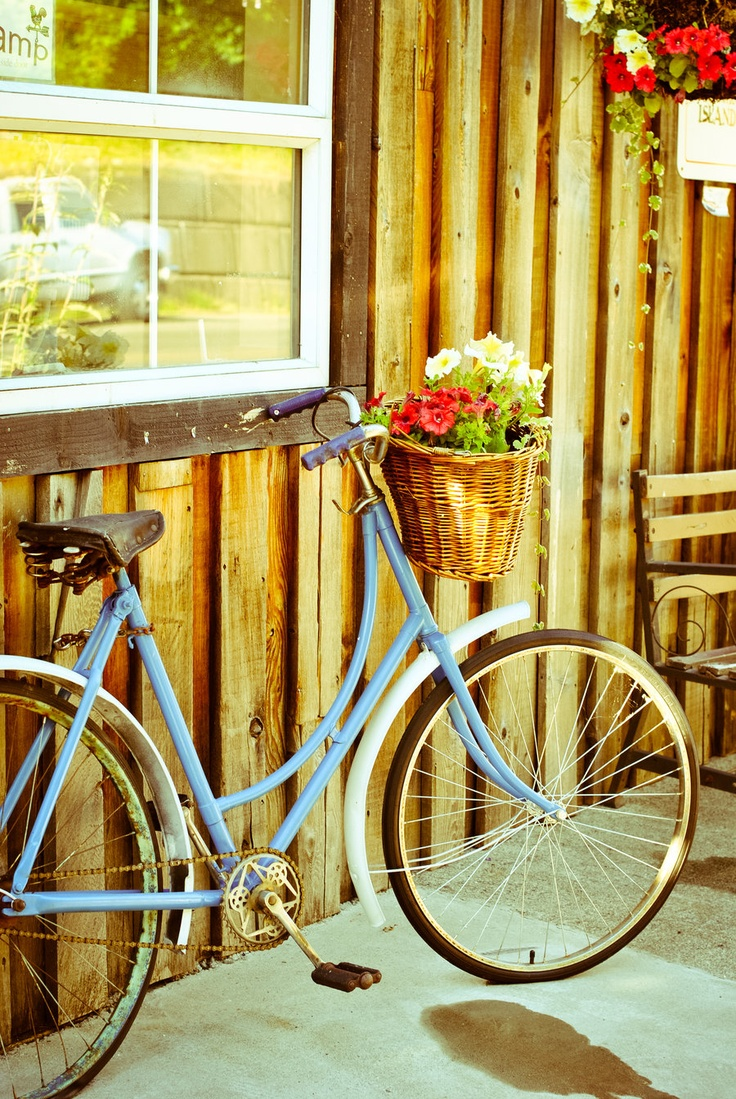 178 best bicycle and flowers images on Pinterest | Romantic ...
