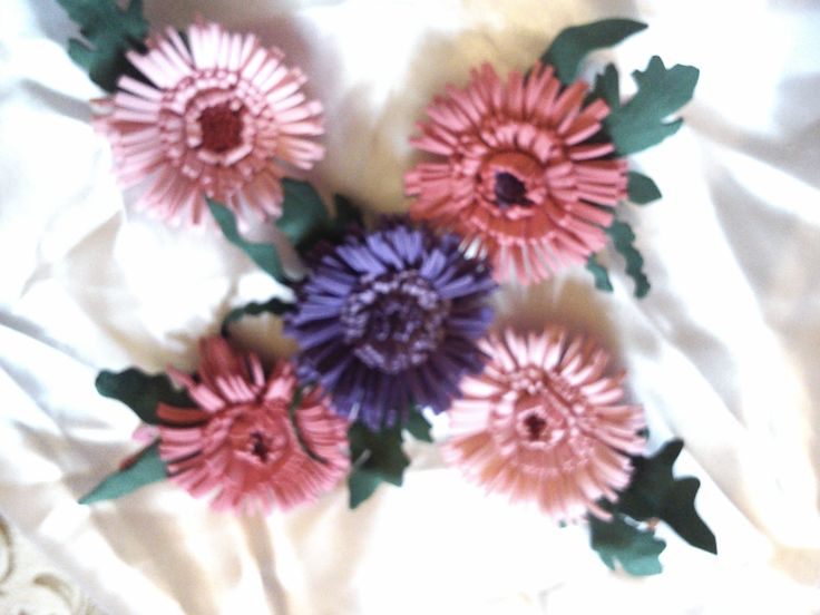 fom asters hairclip