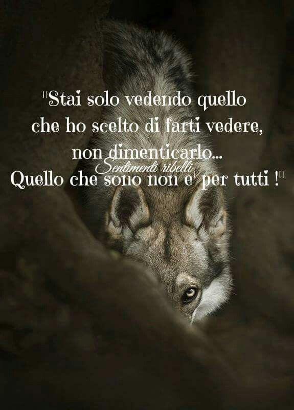 Era Vero Parole Italian Quotes Affirmation Quotes E Quotes