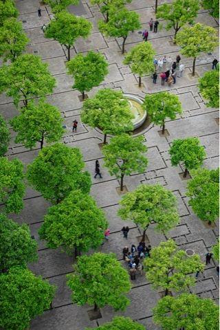 Cathedral Plaza, Seville, Spain. Visit the slowottawa.ca boards >> http://www.pinterest.com/slowottawa/
