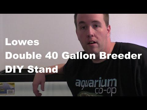 Lowes 40 Gallon Breeder Double Stand - Perfect with Petco $1 Gallon Sale