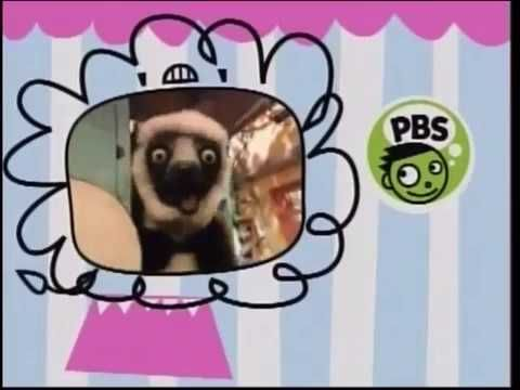PBS Sprout Zoboomafoo - Bing images