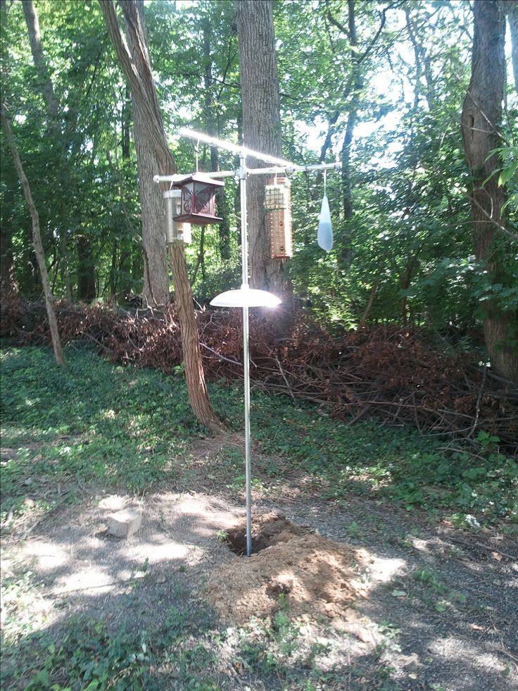 Squirrel proof bird feeder post woodworking projects plans for Bird feeder pole plans