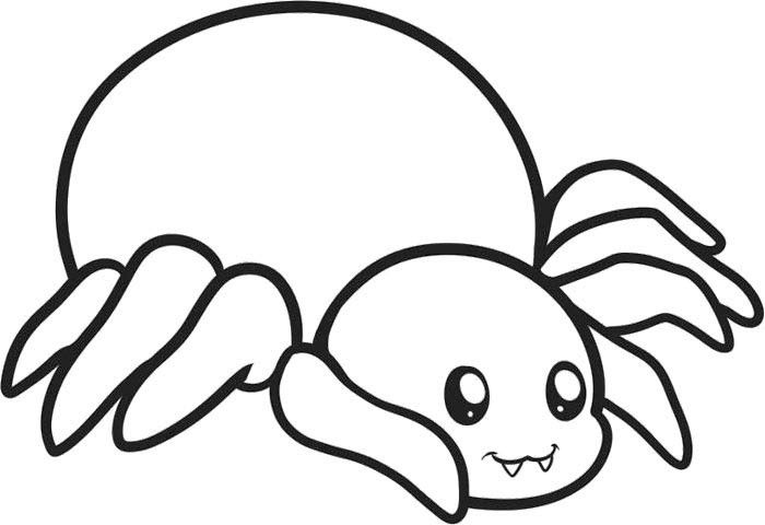Sweet Animal Spider Coloring Page Cute Spider