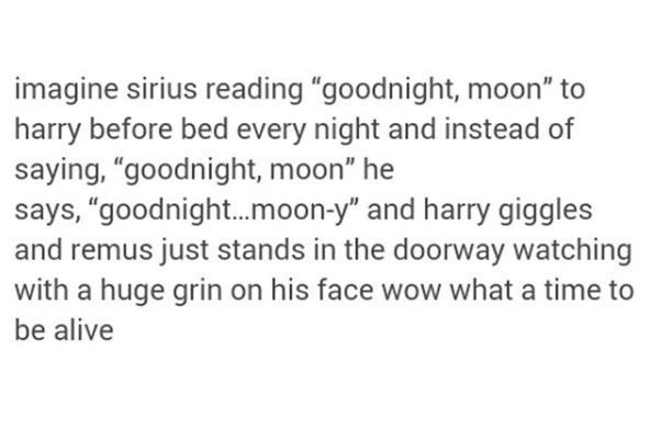 Finally, a Harry Potter headcanon that doesn't cause me pain!