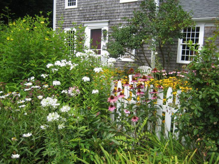 Garden Design Cottage Style 46 best cape style landscaping images on pinterest | garden ideas