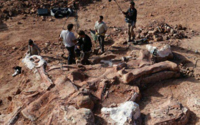 Ossos do maior dinossauro já descoberto são encontrados na Argentina - Ciência - iG