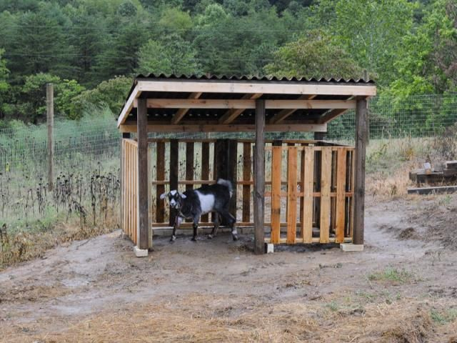 157 Best Animal Shelters Images On Pinterest Goat Shelter Goat
