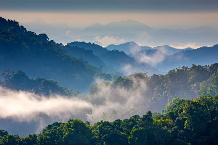Morning Mist at Tropical Mountain Range,This place is in the Kaeng Krachan national park,Thailand