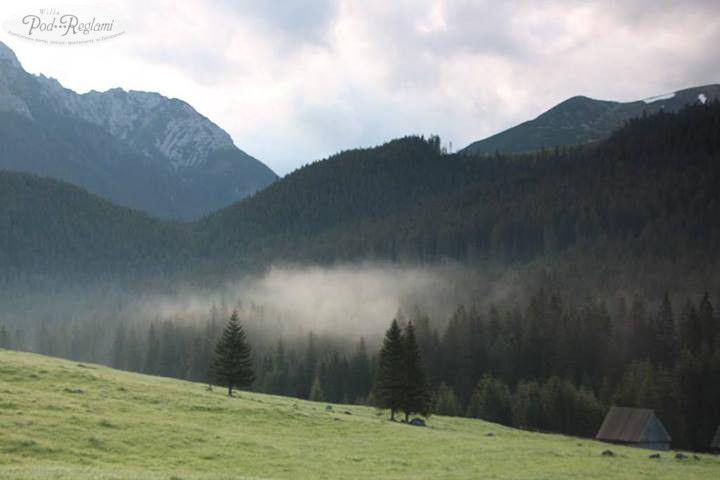 Tatry wiosna w górach - 22 maja 2013 roku Dolina Chochołowska