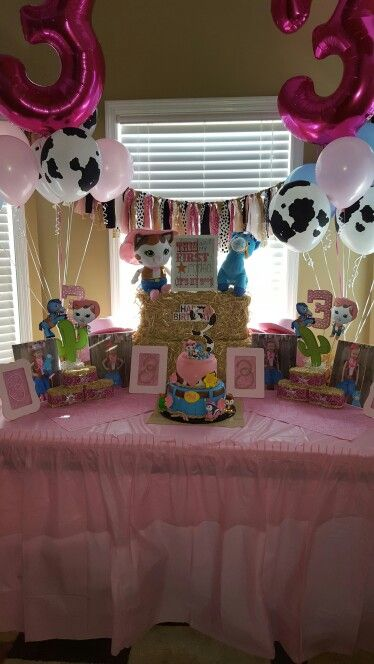 Sheriff Callie birthday party.