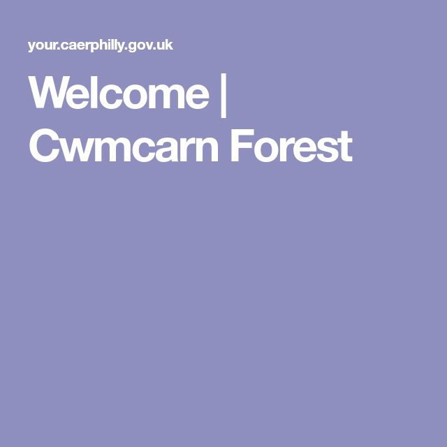 Welcome | Cwmcarn Forest