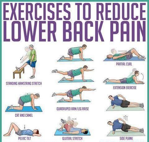 Lower back exercise. Great stretches to do before and after a back workout. //In…