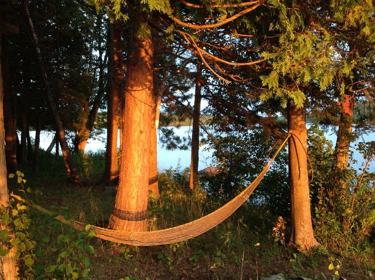 hammock in the late afternoon sun, Lighthouse Landing